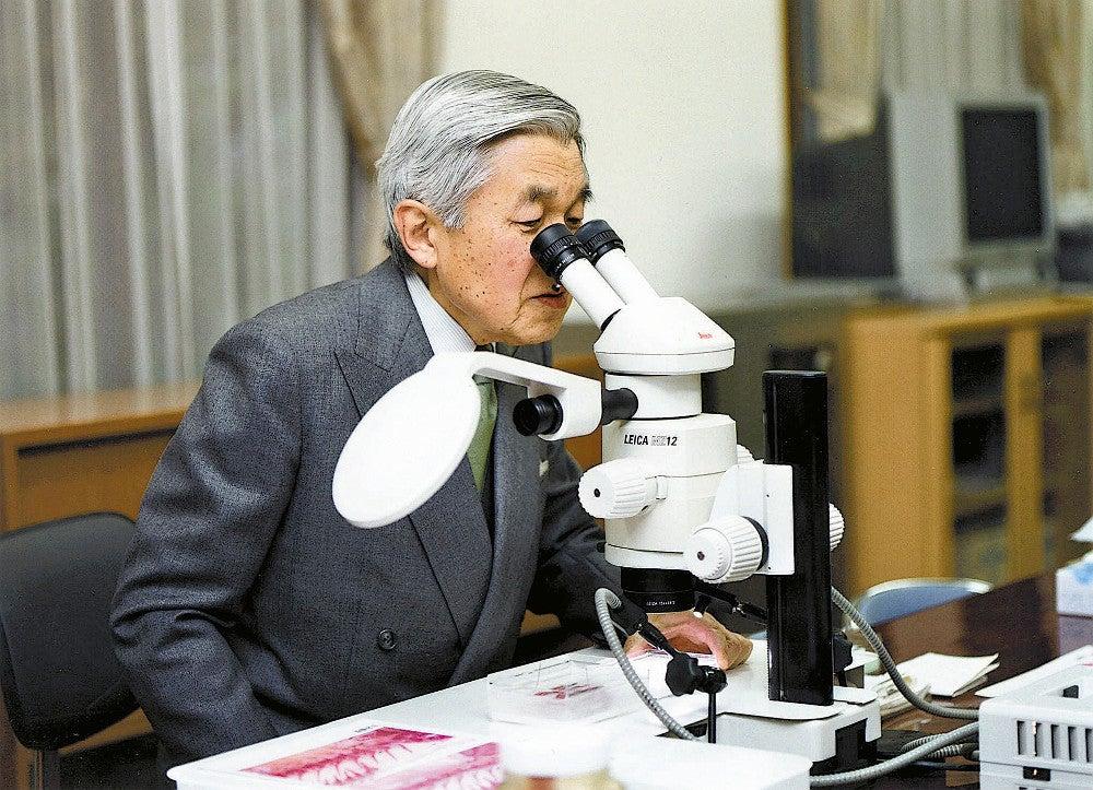 【生物学】ハゼ研究者の上皇陛下、17年ぶり新種発見…年内にも論文発表へ 過去に7本の論文のハゼ研究の第一人者  [しじみ★]