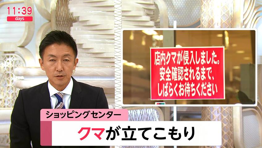 【速報】石川県加賀市のショッピングセンターにクマが立てこもり。警察や猟友会が店内を捜索中★3  [記憶たどり。★]