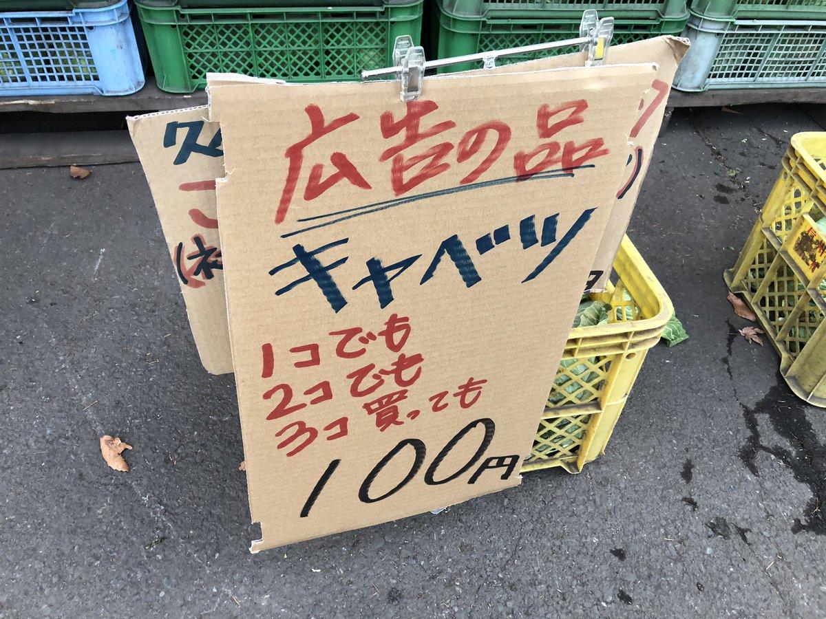 【悲報】キャベツさん、ガチで豊作すぎて3個100円で売られてしまう……