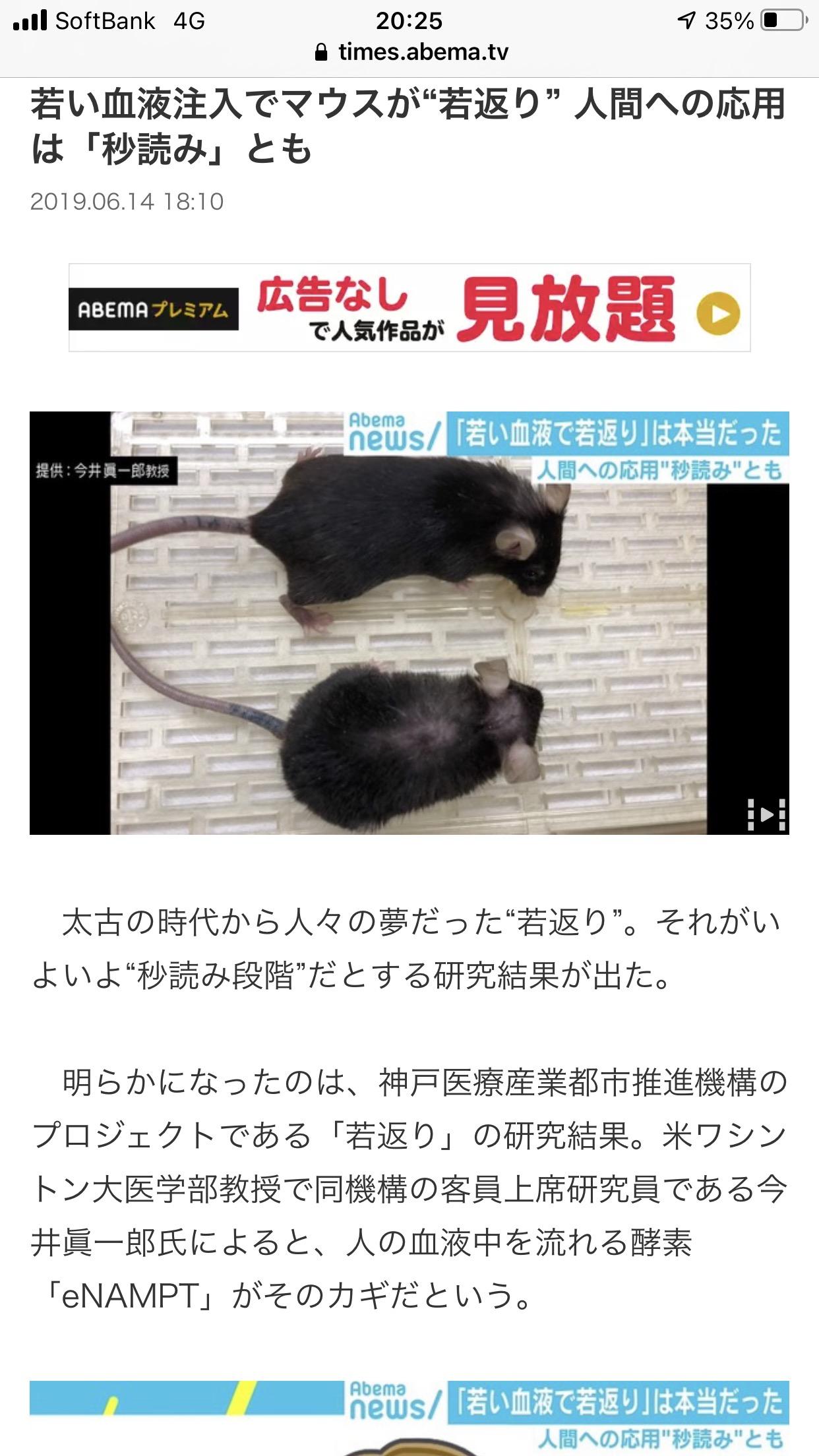 若い血液注入で若返る 80歳が30歳になる 髪の毛がはえてフサフサになる 日本のマウス実験で判明  [蒼い未来★]