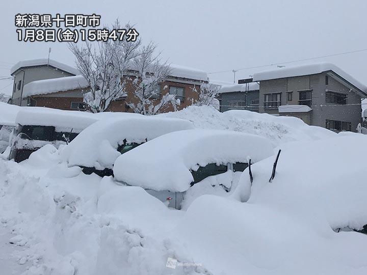 新潟の雪の降り方がヤバいだろコレ。。。新潟全体が鎌倉になっちまうレベル  [風★]