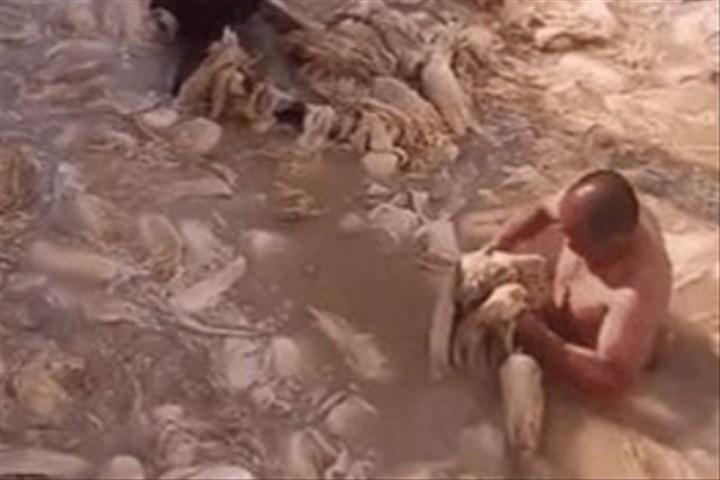 【中国】汚水の中の白菜、裸で漬ける…中国、第2の「低質キムチ」波紋必至  ★2  [砂漠のマスカレード★]